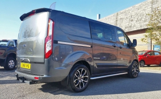 <h5>Ford Transit Wasp</h5>
